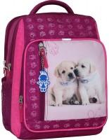 Школьный рюкзак (ранец) Bagland 0012870