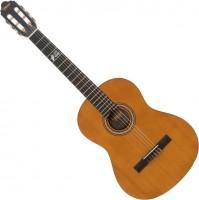 Гитара Valencia VC204L