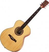Гитара Crusader CF-6010