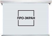 Проекционный экран Pro-Ekran Motorized 400x300