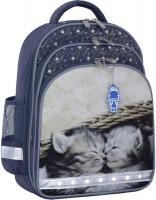 Фото - Школьный рюкзак (ранец) Bagland Mouse 321