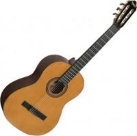 Гитара Valencia VC264