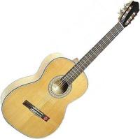 Гитара Strunal 4870