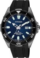 Фото - Наручные часы Citizen BN0205-10L