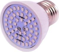 Лампочка Venom LED FL-P 3W Fito E27