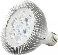 Лампочка Venom LED GR 21W Fito E27