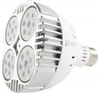 Лампочка Venom LED NSFS 45W Fito E27