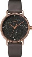 Фото - Наручные часы Timex TW2T87700