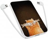 Фото - Powerbank аккумулятор ZIZ Cat 5000