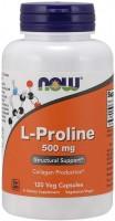 Фото - Аминокислоты Now L-Proline 500 mg 120 cap