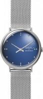 Наручные часы Skagen SKW6584