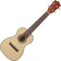 Гитара Prima M340C