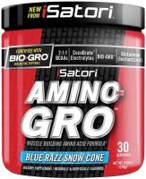 Фото - Амінокислоти iSatori Amino-Gro 270 g