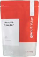 Фото - Аминокислоты GoNutrition Leucine Powder 250 g