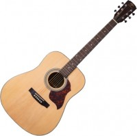 Гитара Virginia VD-22
