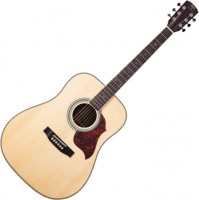 Гитара Virginia VD-185S
