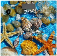 Фото - Весы Vegas VFS-3080FS