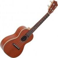 Гитара Prima M200C