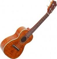 Гитара Prima M360C