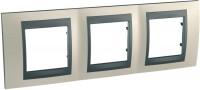 Фото - Рамка для розетки / выключателя Schneider Unica Top MGU66.006.295