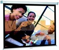 Проекционный экран Projecta SlimScreen 240x139