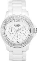 Фото - Наручные часы FOSSIL CE1010