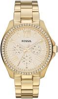 Фото - Наручные часы FOSSIL AM4482
