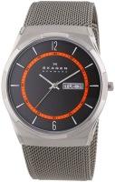 Наручные часы Skagen SKW6007