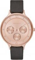 Наручные часы Skagen SKW2392