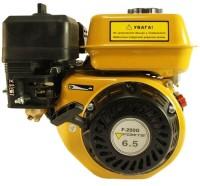 Фото - Двигатель Forte F200G