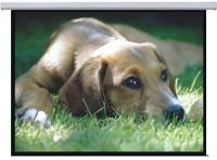 Проекционный экран Lumi Standard Auto-lock 300x220