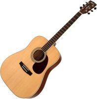 Гитара Cort Earth 100