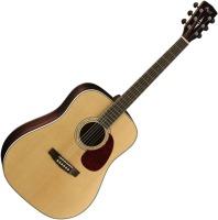 Гитара Cort Earth 100R