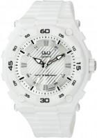 Наручные часы Q&Q GW79J004Y