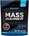 WILLMAX Mass Gainer 2кг