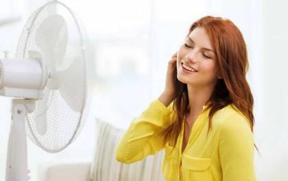 Ветродуи на страже комфортного микроклимата: 5 напольных вентиляторов