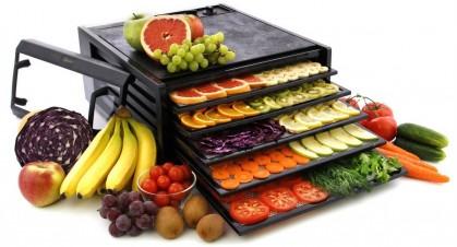 5 лучших сушилок овощей и фруктов для дома