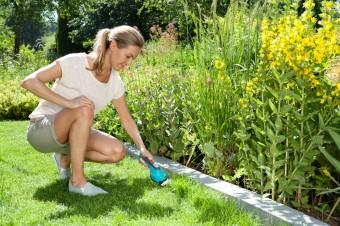 Альтернатива садовым ножницам: ТОП-5 кусторезов для травы и кустарников