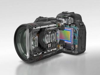 Полный кадр решает? Стоит ли покупать фотоаппарат-фуллфрейм?