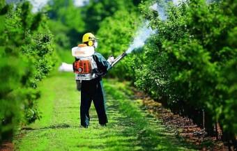Садові лікарі: ТОП 5 бензинових обприскувачів для саду та городу